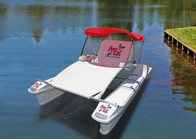 Funcat on the lake